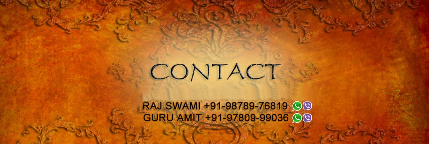 contact us indianastrologyguru